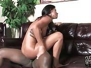 Black Men Take Turns Fucking Lovely India Summer 2