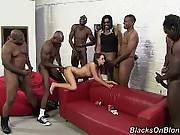 blacks on blondes - Pressley Carter